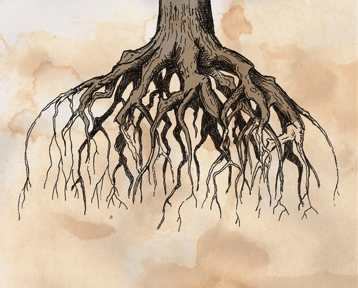 The_Roots